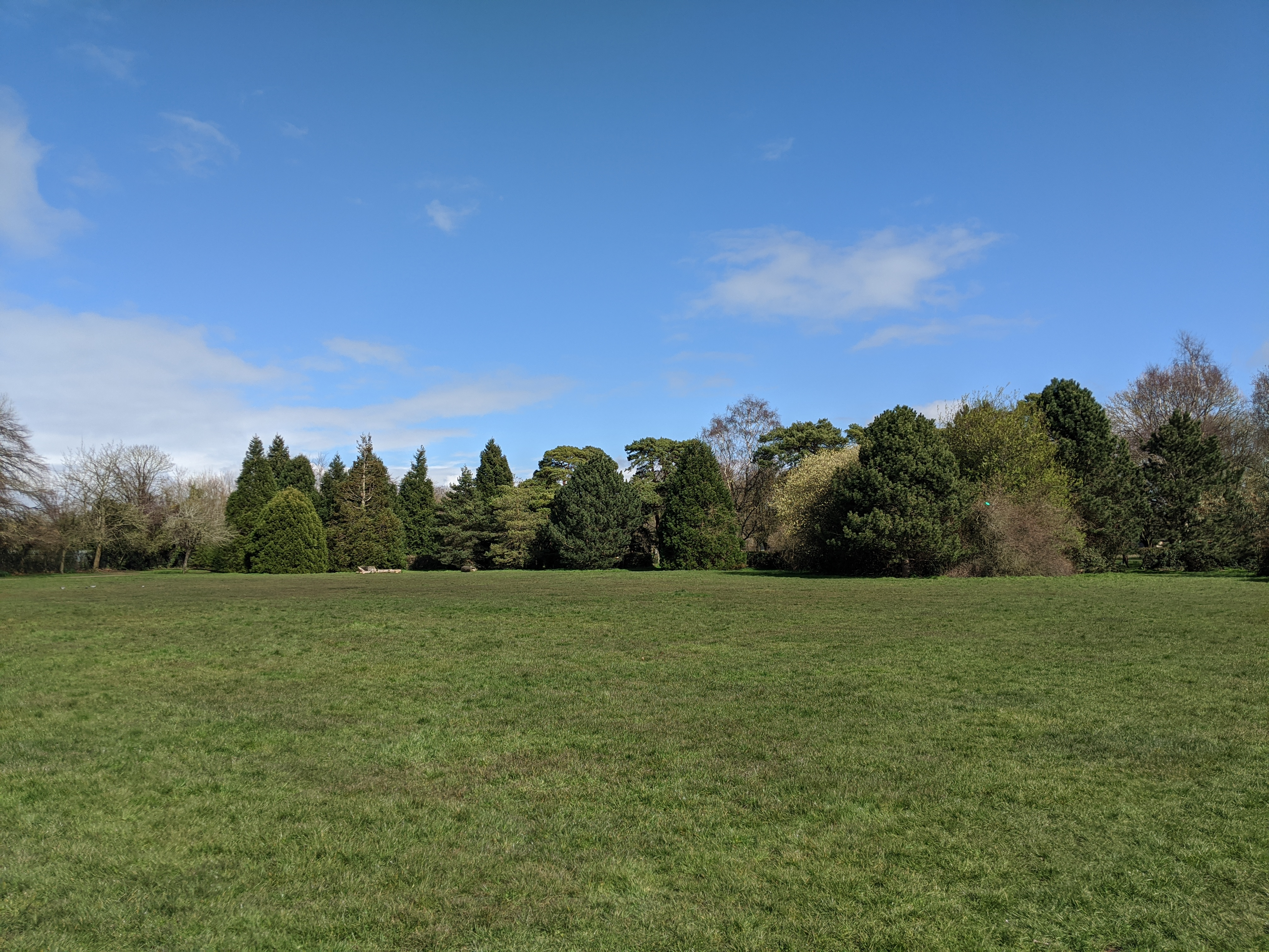 Why You Should Not Be Allowed To Have That Picnic In The Park Even If It Does Not Make A Difference Practical Ethics Which of the sentences are correct? practical ethics university of oxford